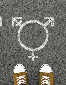 Integrar perspectiva de Género Feminista en tu práctica profesional