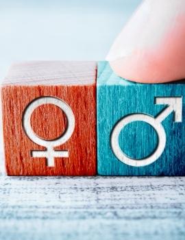 Enfoque integrado de género