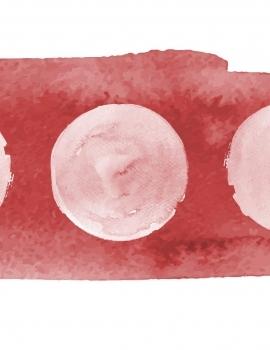 Mensajes del ciclo menstrual y la plenopausia