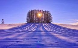 Yule, Solsticio de Invierno Encuentro Online